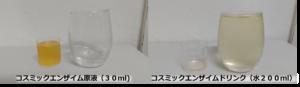 流動食との違いも!酵素ドリンクとヨガで乗り切る綿本式断食の体験談
